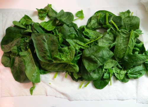 Spinach, washed and drying